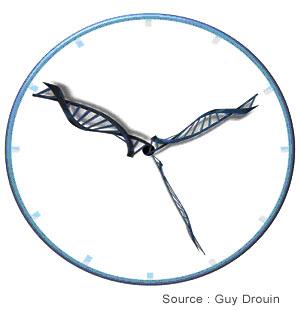 Horloge moléculaire datant